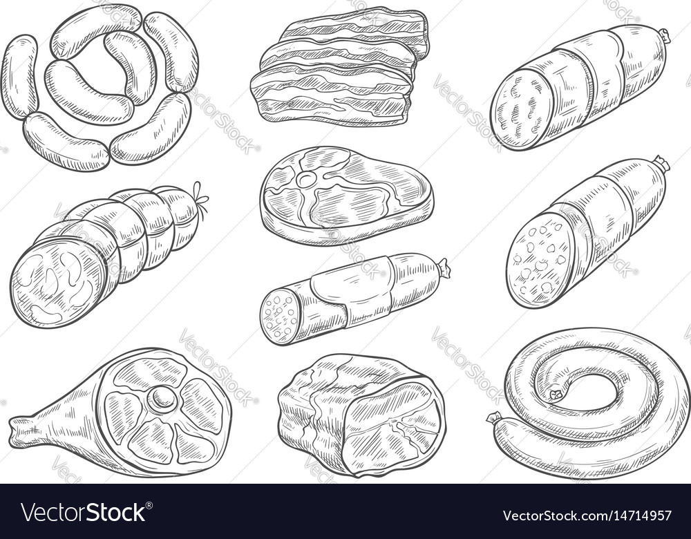 Sketch icons of butchery meat products vector image