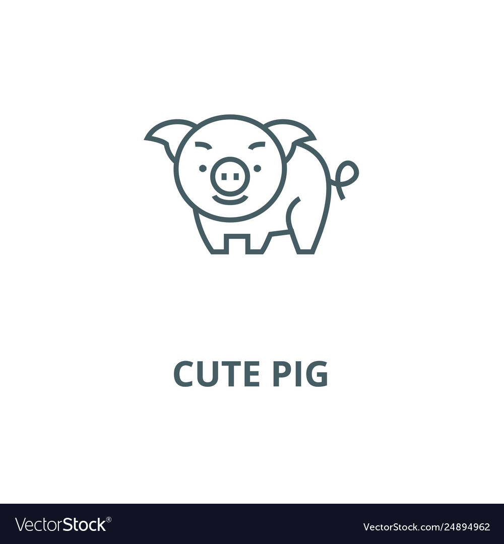 Cute pig line icon cute pig outline sign