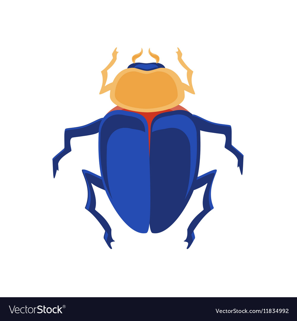Egyptian scarab vector image