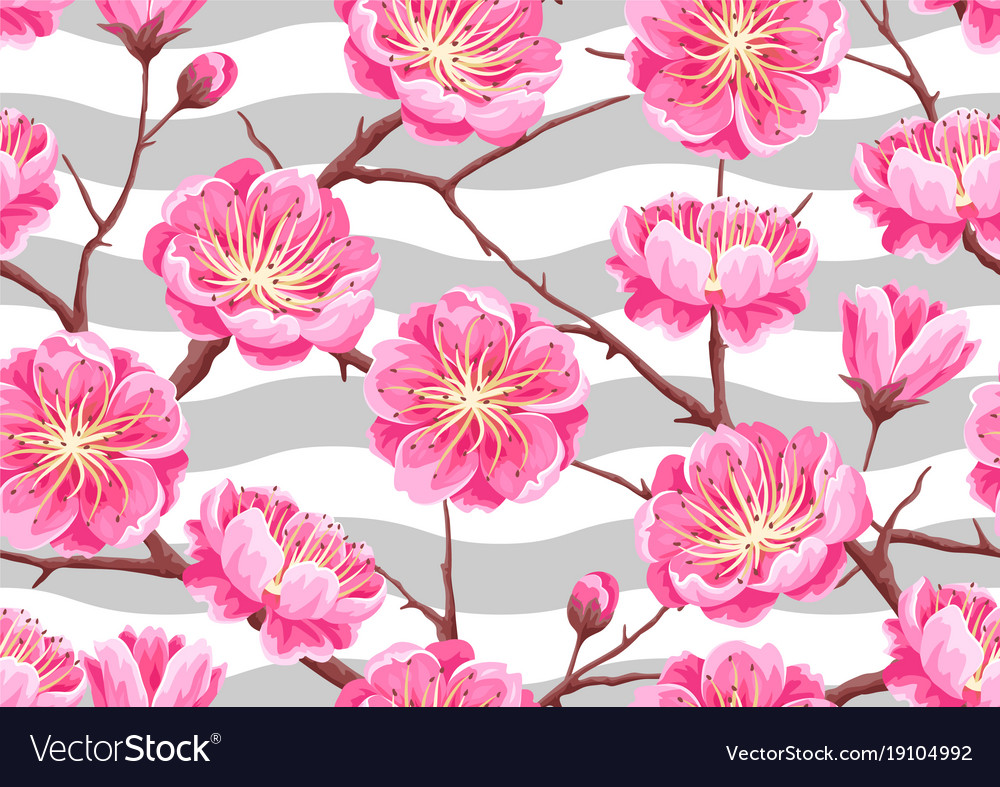 Seamless pattern with sakura or cherry blossom