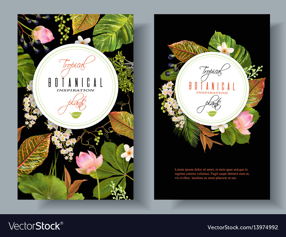 Tropical plants banners