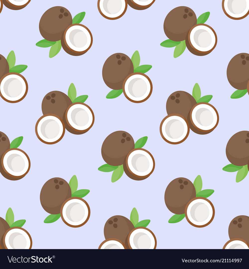 Coconut flat seamless pattern vector image