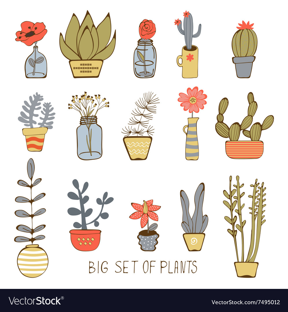 Cute hand drawn collection of house plants