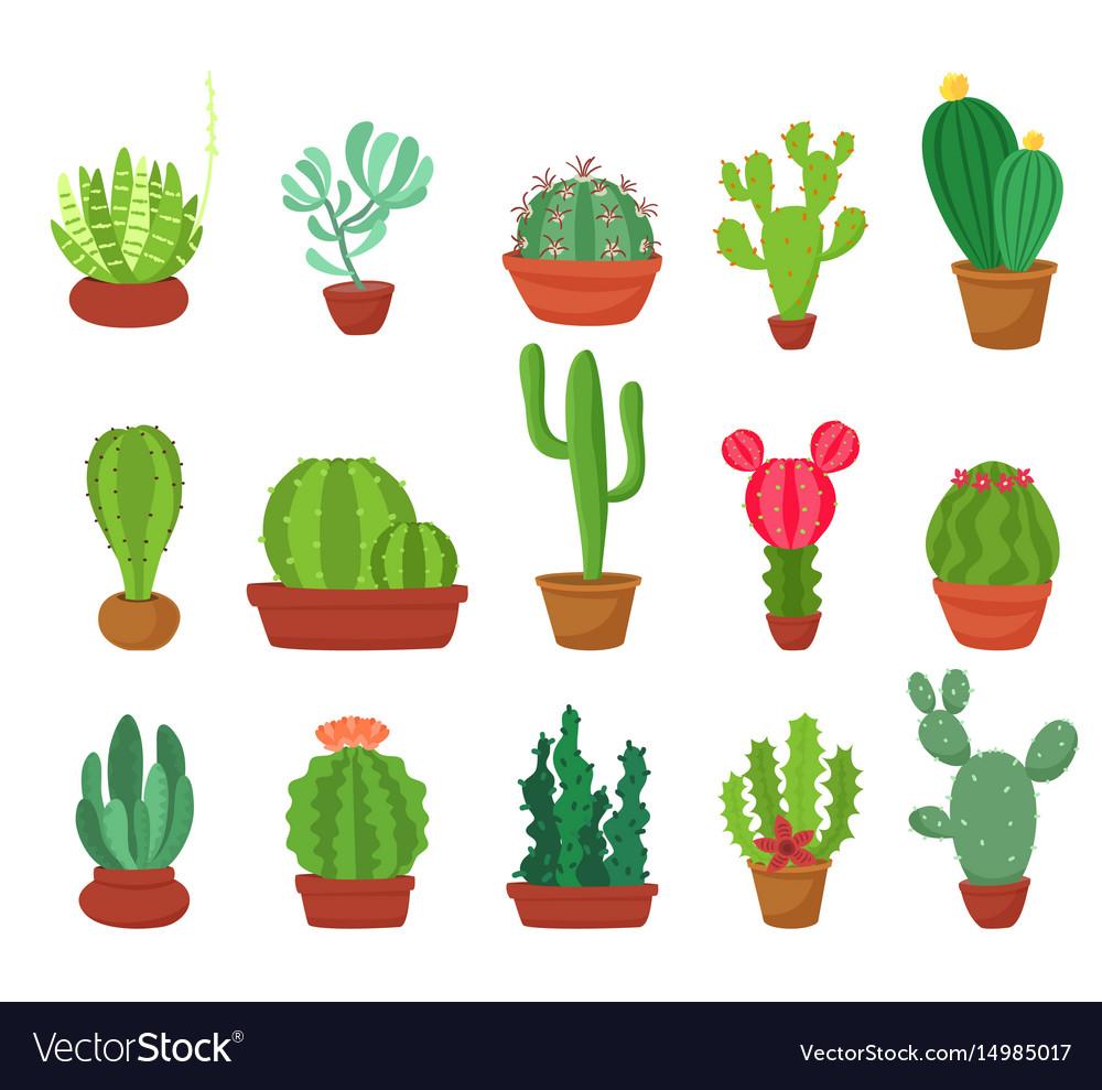 Cactus flat style