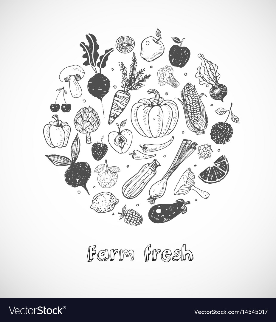 Card with doodle fruits and vegetables on white