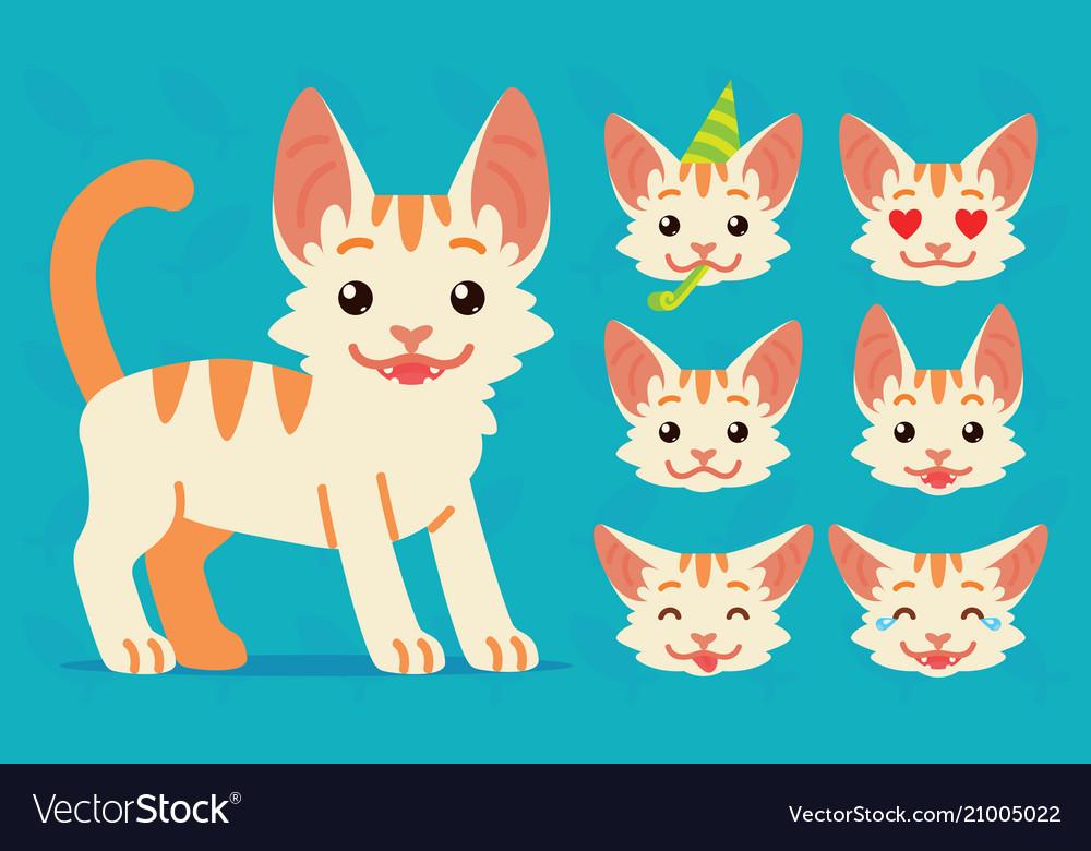 Cute cat standing of happy