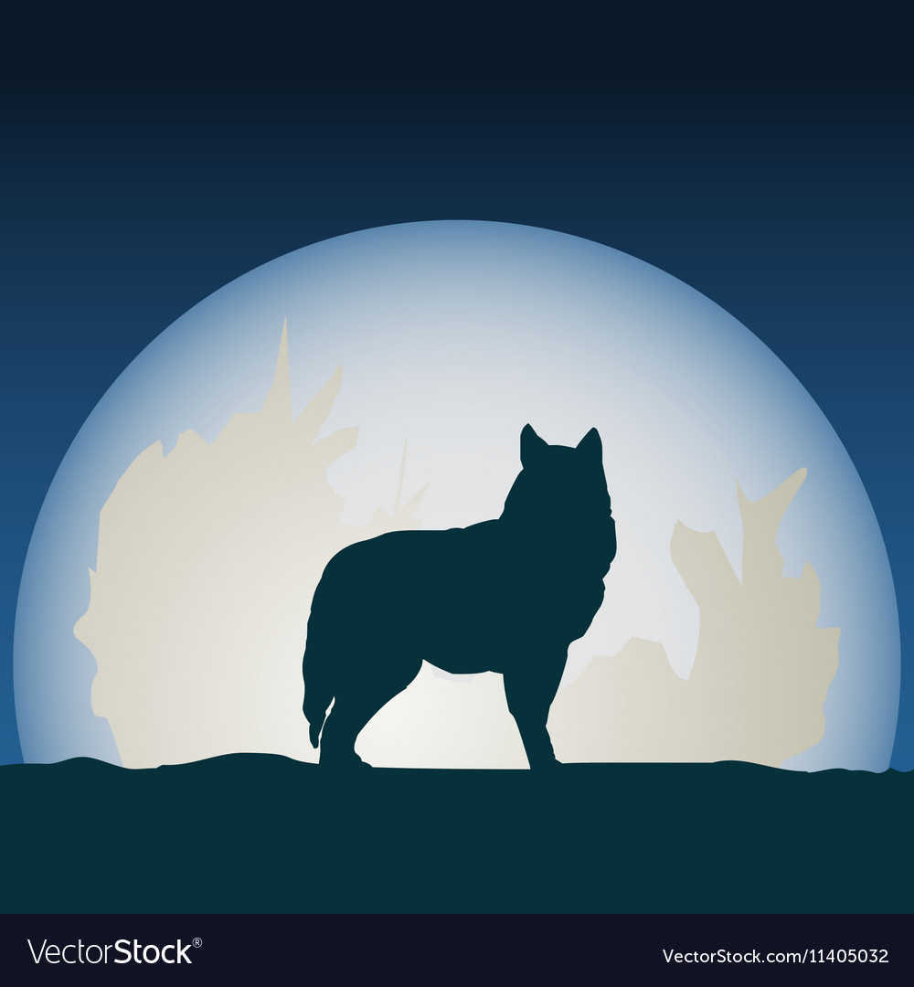 Wolf in front of the moon