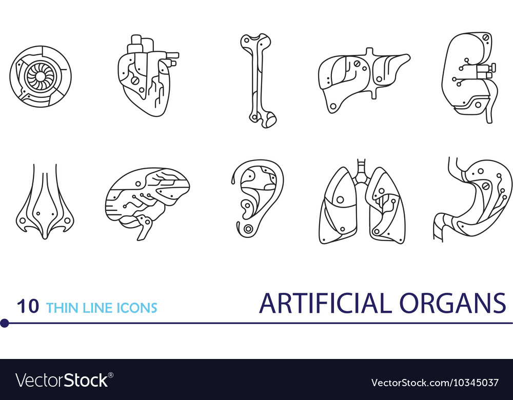 Thin line icons - artificial organs