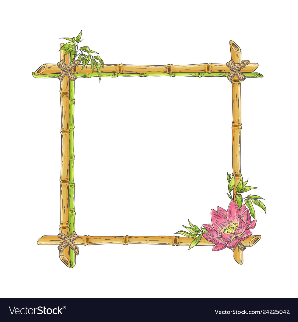 Sketch bamboo frame with lotus flower