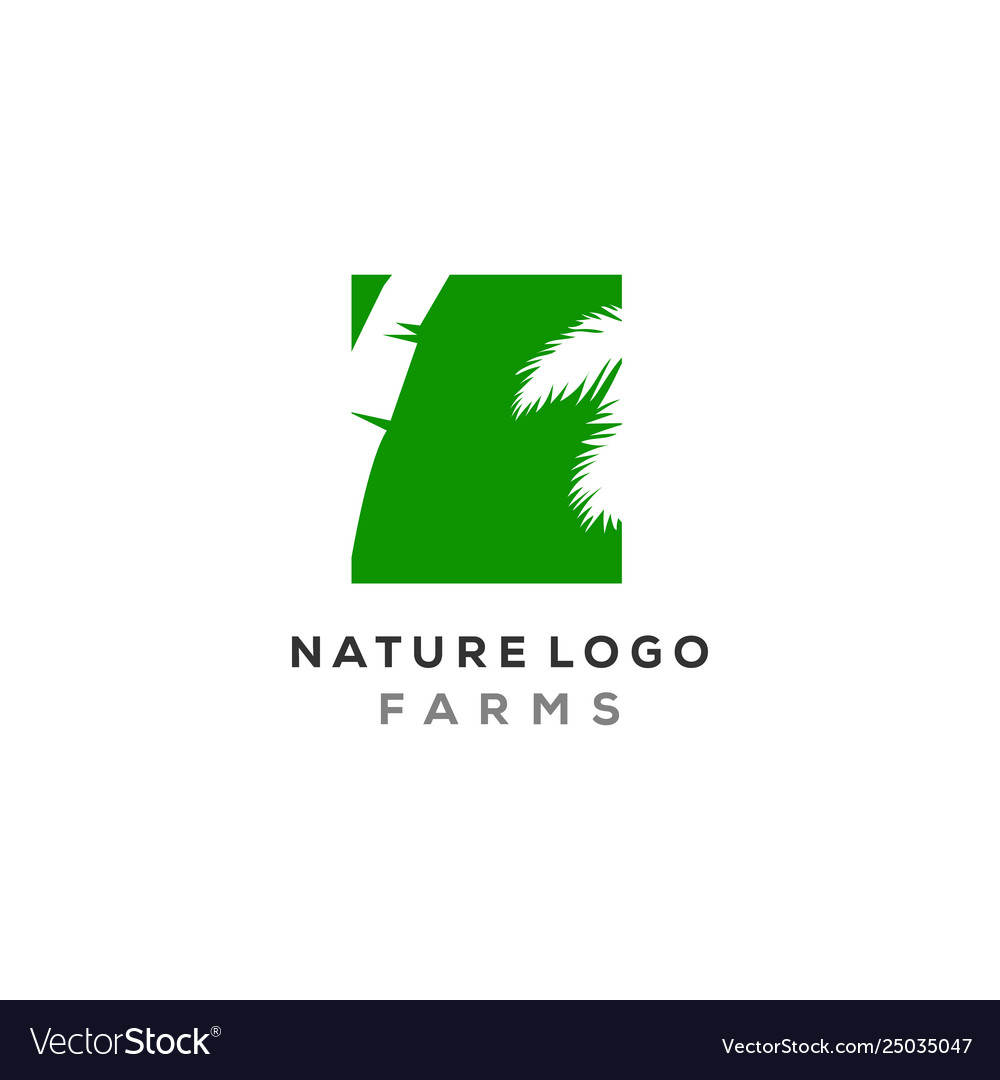 Palm leaf logo designs in negative space type