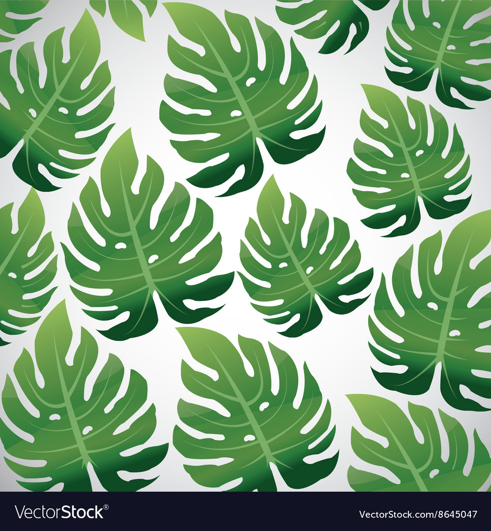 Tropical Leaves Design Leaf Icon Natural Concept Vector Image Are you searching for tropical leaves png images or vector? vectorstock
