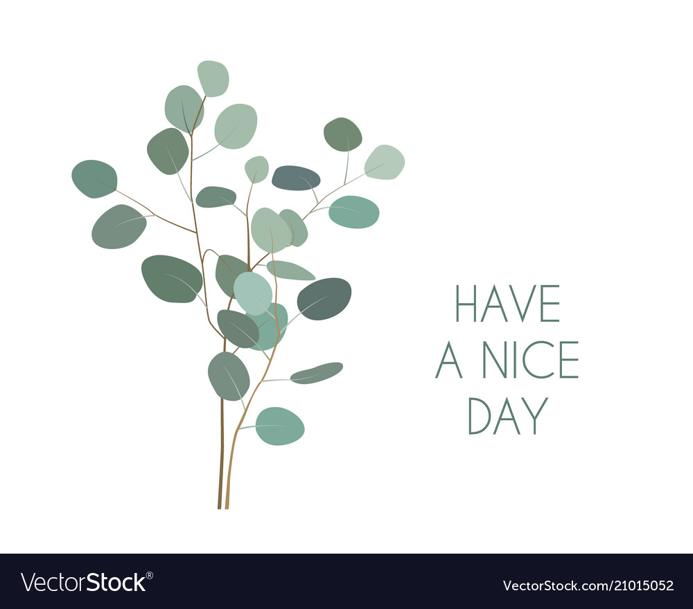 Have a nice day greeting card with silver dollar vector image m4hsunfo