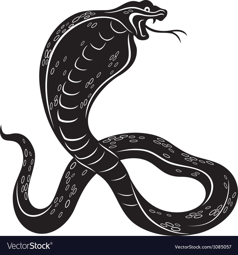 cobra snake royalty free vector image vectorstock rh vectorstock com snake victorian symbolism snake vector download