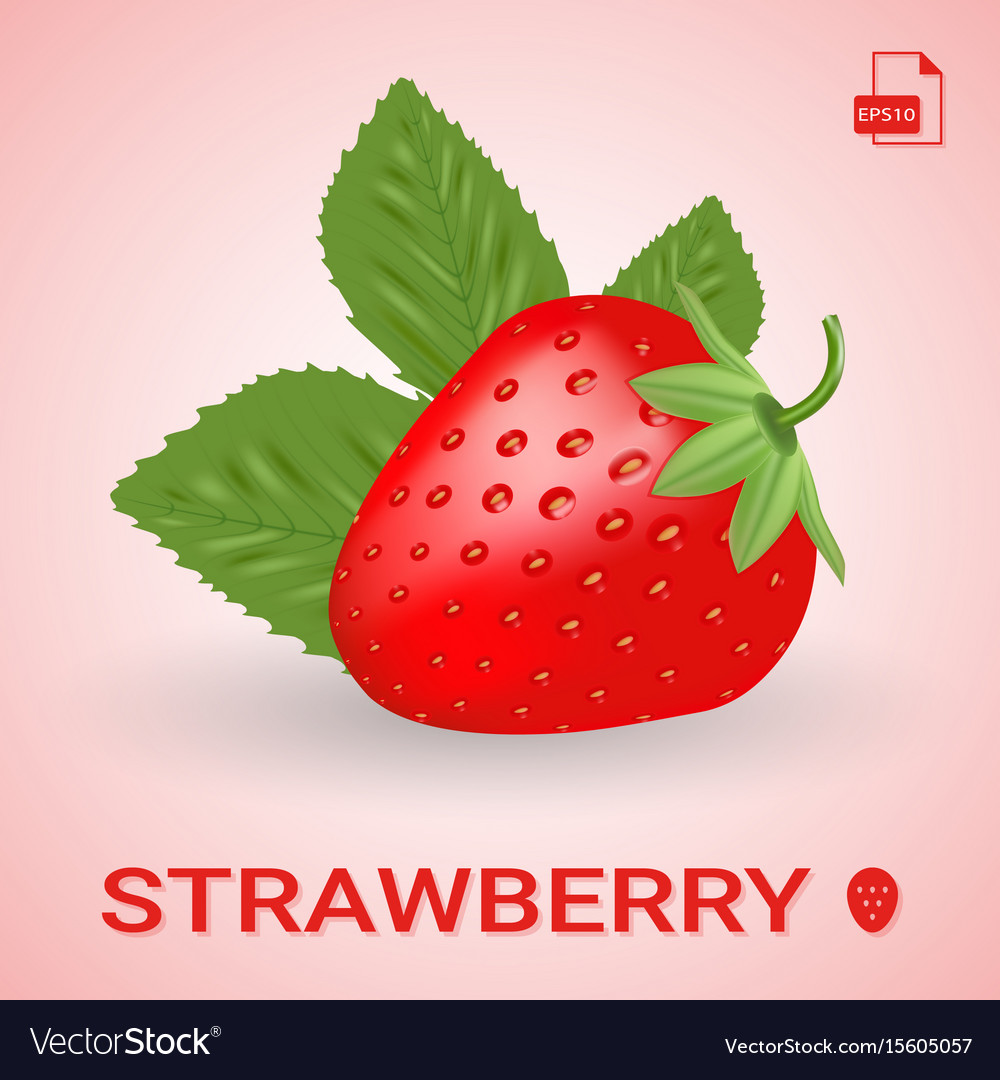 Single fresh ripe strawberry with leaves