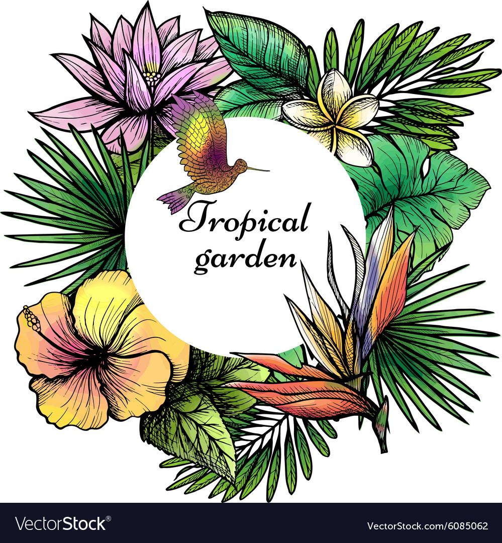 Tropical Frame Design vector image