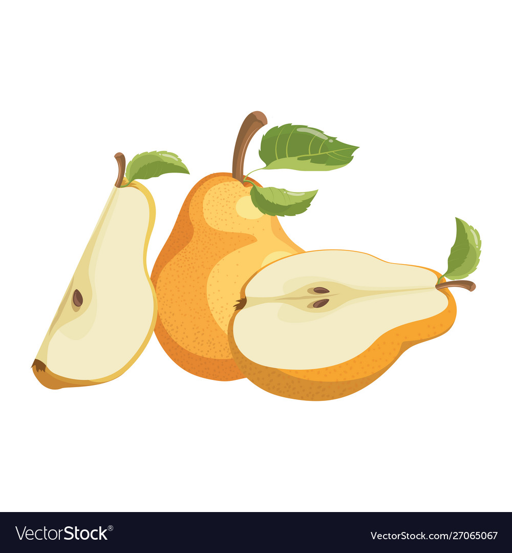 Cartoon pear juicy sliced fruit drawing