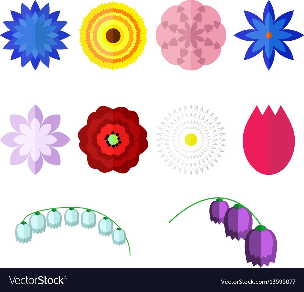 Flowers isolated on white background set