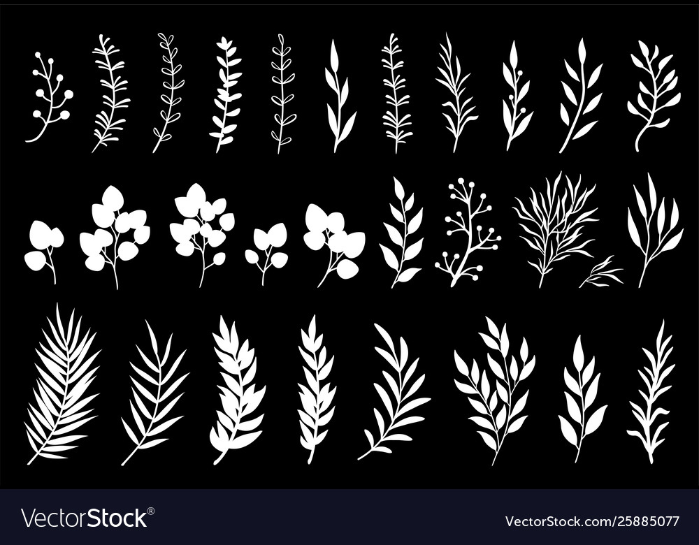 Set white tree branches and leaves