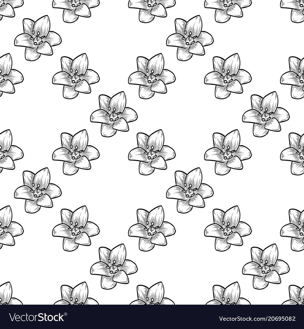 Bluebells seamless pattern