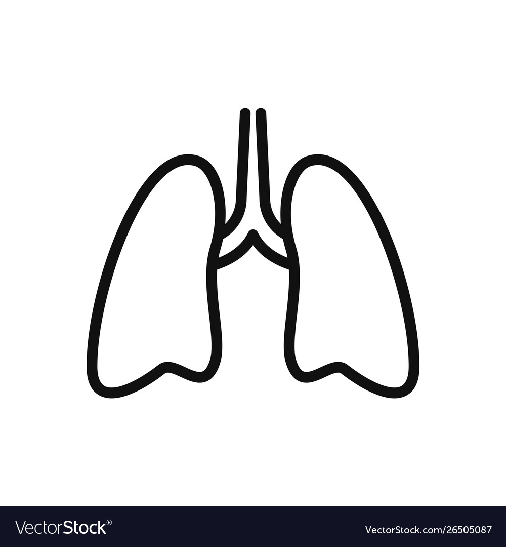 Lungs icon in modern design style for web site