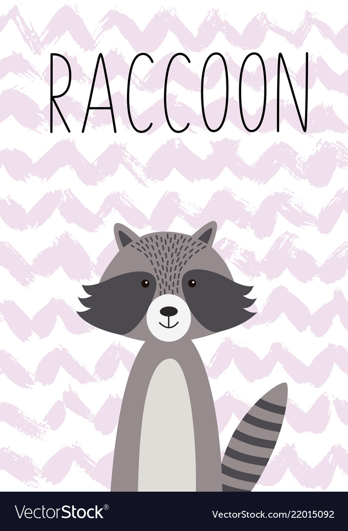 Cartoon animal cute raccoon poster card for