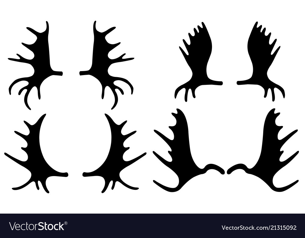 Set Of Different Moose Antlers Royalty Free Vector Image