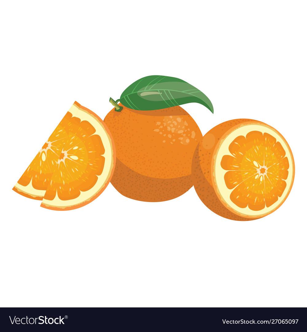 Cartoon orange fresh vitamin fruit juicy citrus