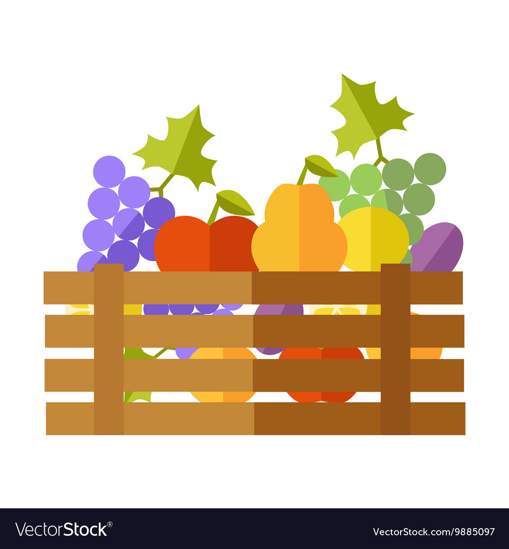 Fresh Fruits at the Market vector image
