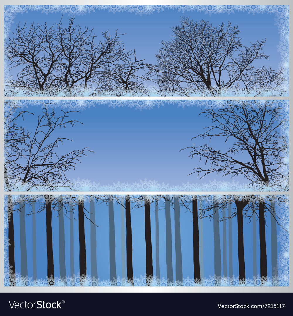 set of forest banners royalty free vector image