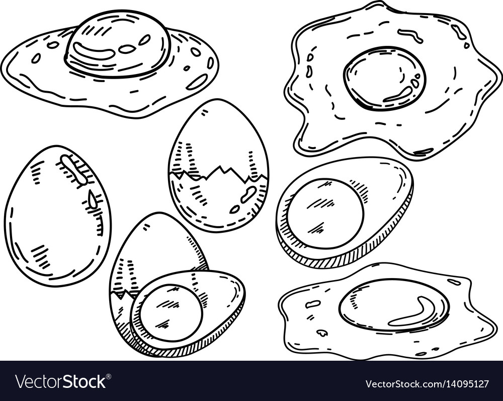 Fried Egg Design With Hand Sketch Royalty Free Vector Image