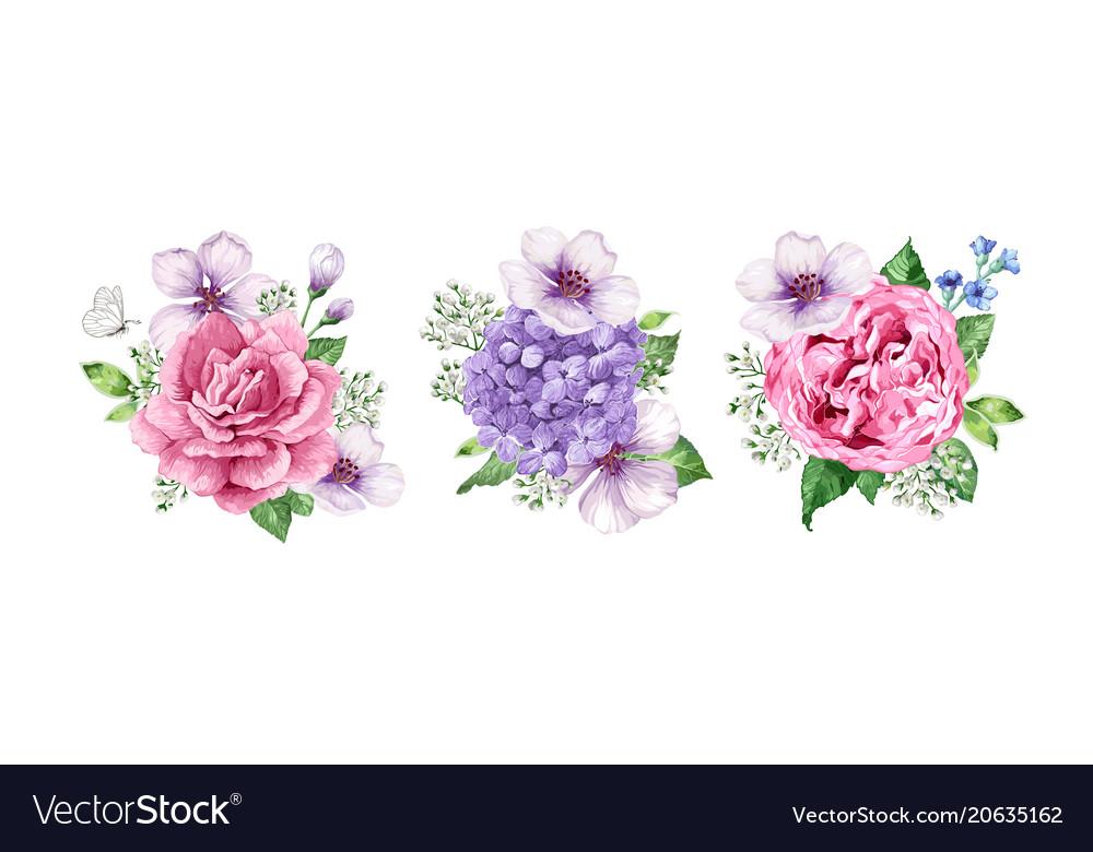 Set flower bouquets apple tree flower
