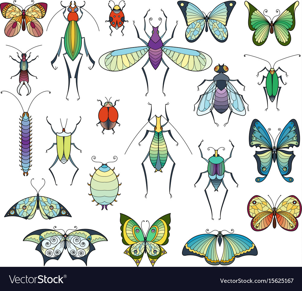 Colored insects isolate on white bugs and