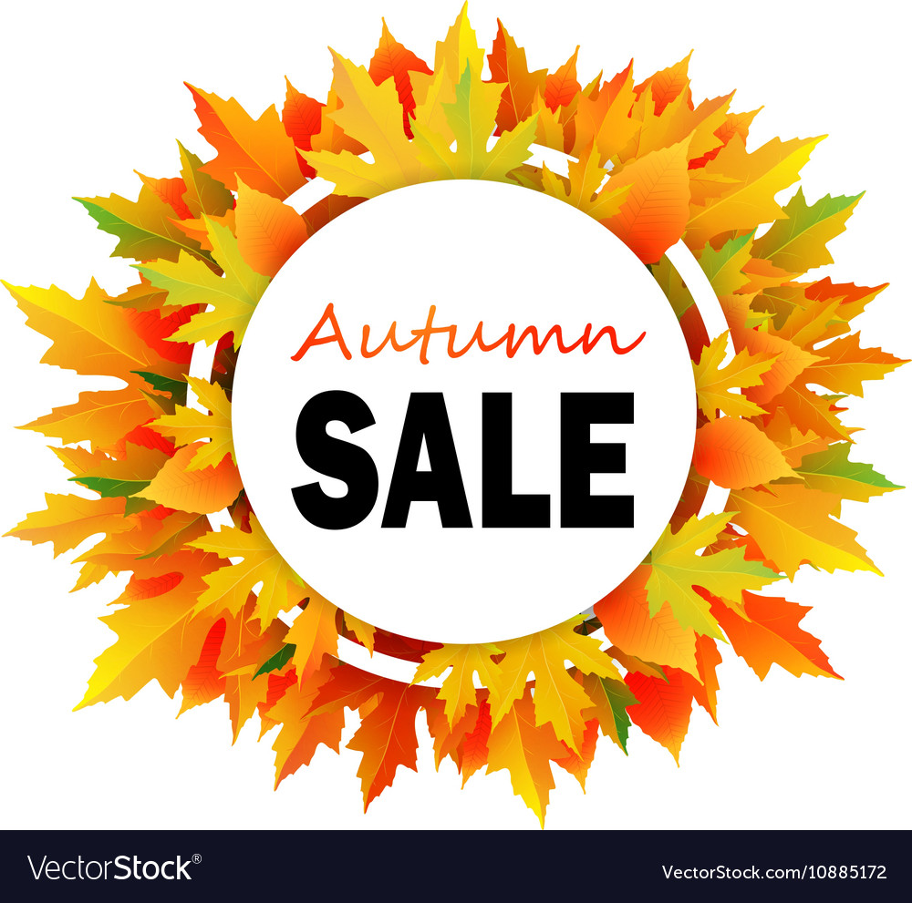 Autumn discount fall leaves