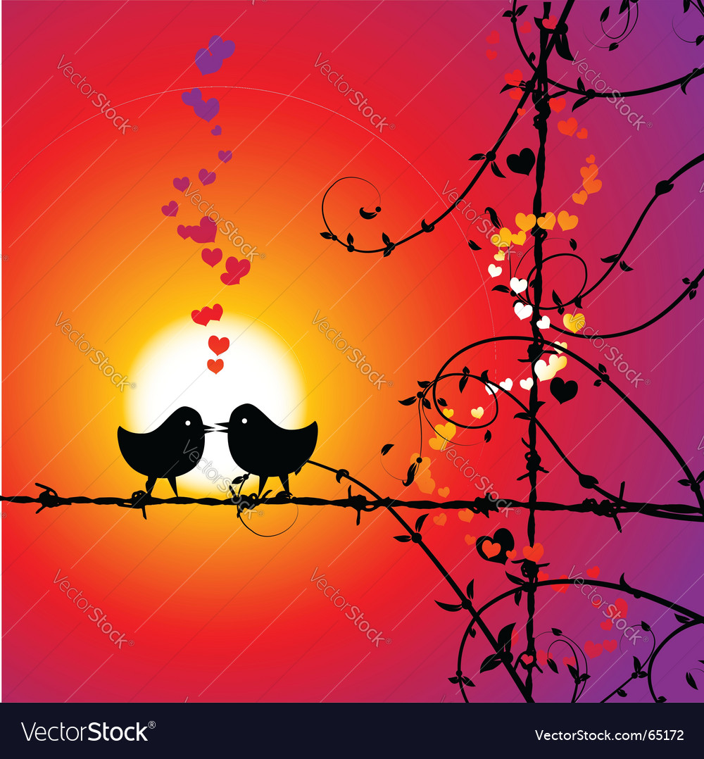 love birds kissing wallpaper. Two Love Birds Kissing