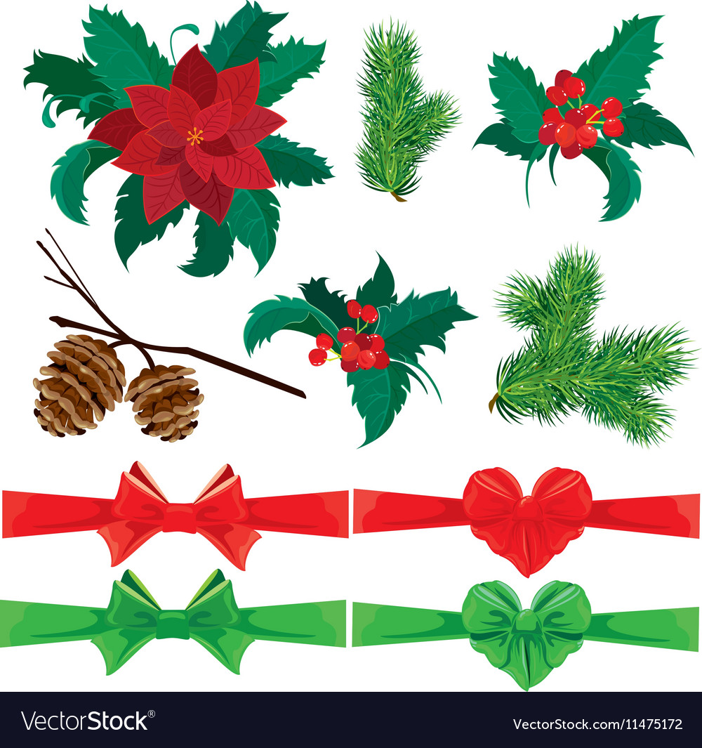 Set of winter holiday plants flowers berries and