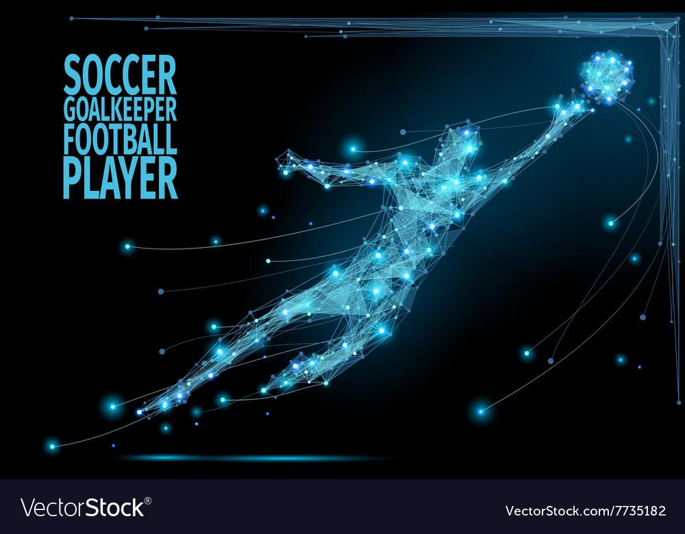 Goalkeeper poly soccer vector image
