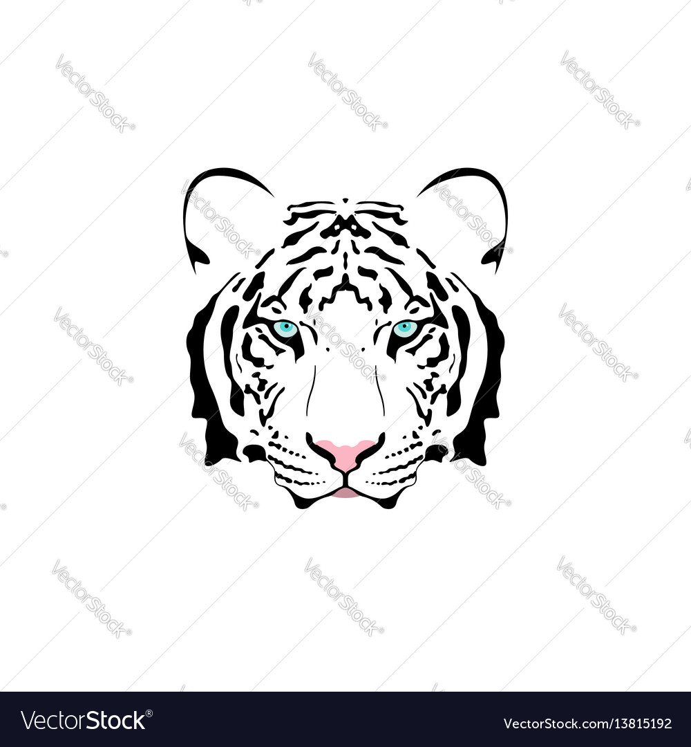 A White Tiger Head Vector Image