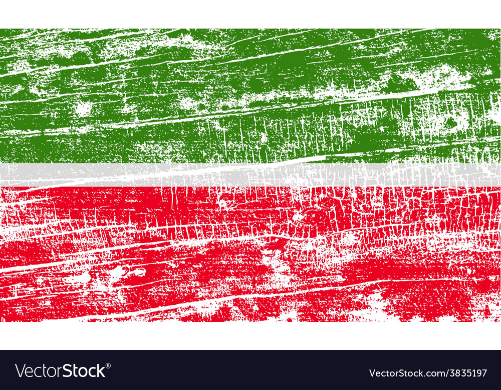 flag of tatarstan with old texture royalty free vector image