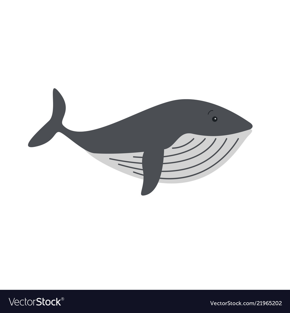 Whales and dolphins sea design icon
