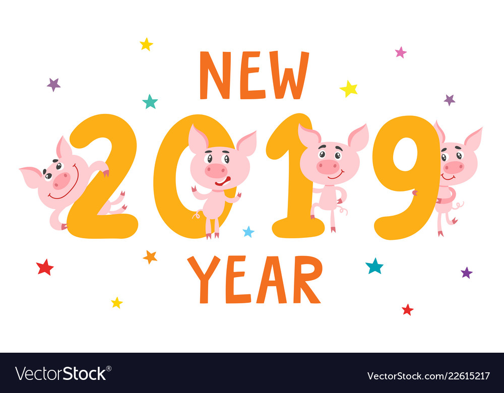 new year card with cartoon pig and 2019 isolated vector image