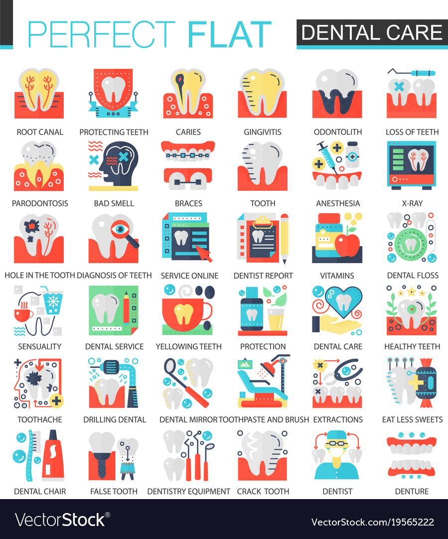 Dental care complex flat icon concept vector image