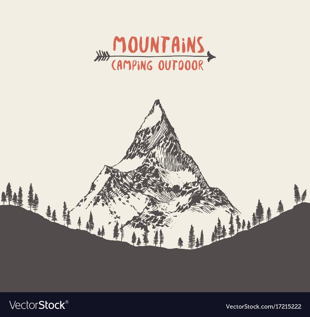 Hand drawn mountain landscape pine forest