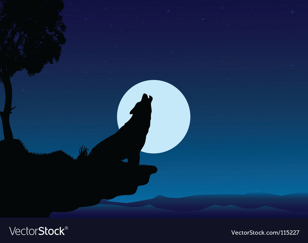 Howling wolf into night