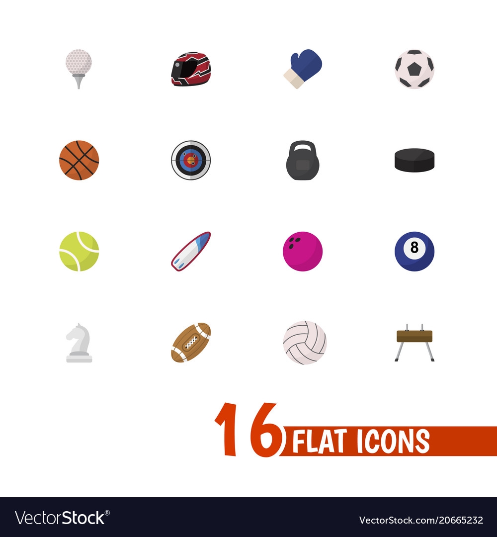 Set of 16 editable sport icons flat style vector image