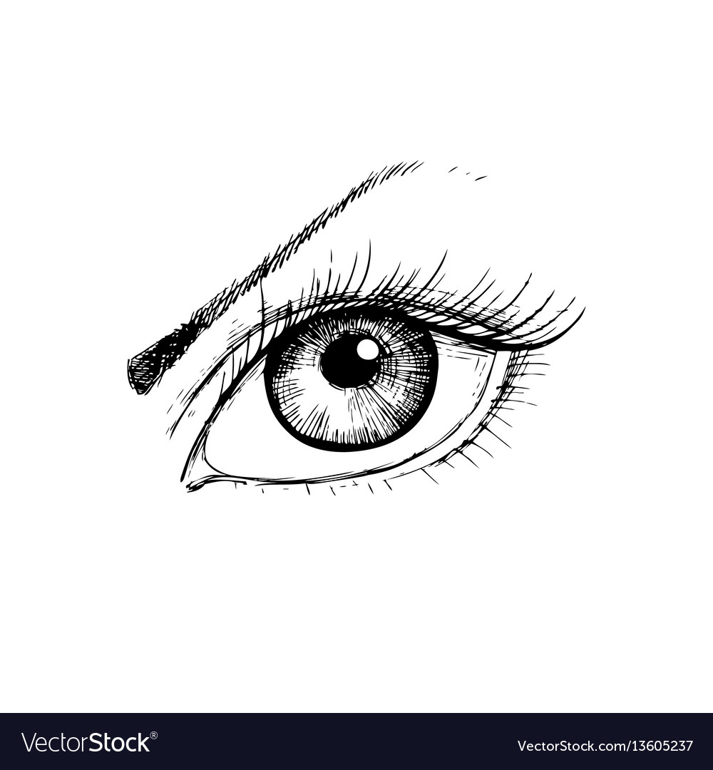 Female eye with hand- drawing style