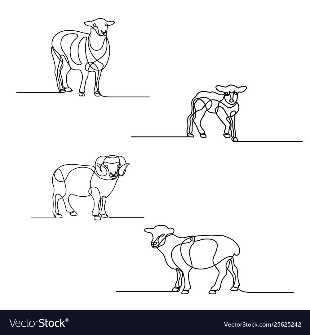 Continuous line drawing set sheeps design