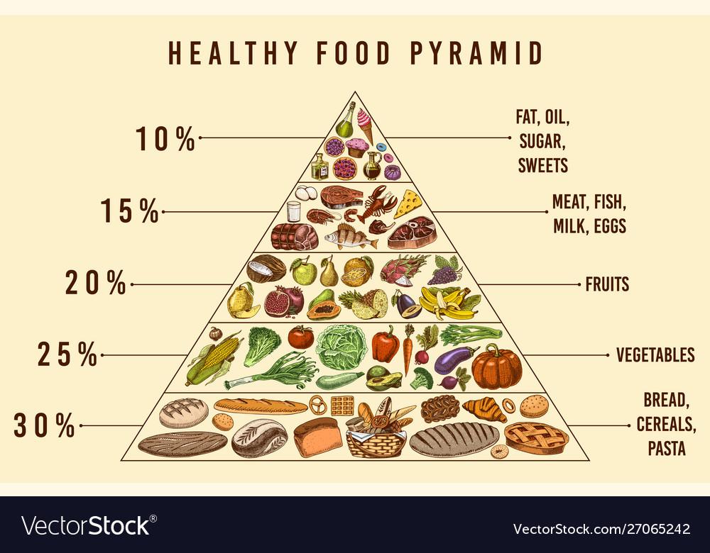Healthy food plan pyramid infographics