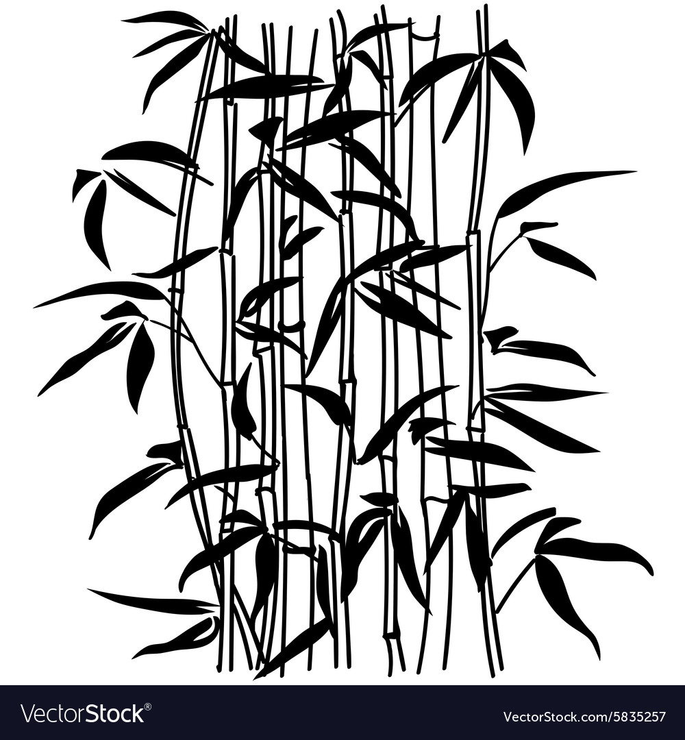 bamboo leaf background the top of the bamboo vector image rh vectorstock com bamboo vector free bamboo vector frame