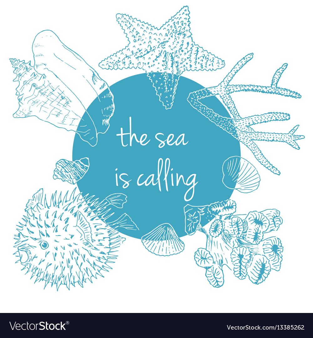 Sea is calling marine background with seashells
