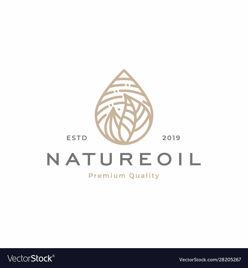 Nature oil droplet tropical leaves logo template